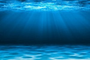 Why Make Your Custom Swimming Pool a Salt Water Pool?